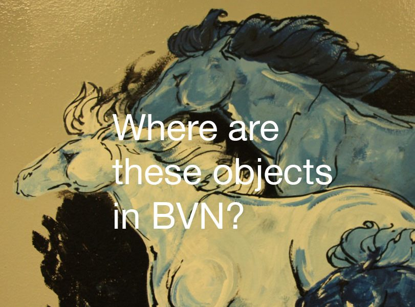QUIZ: Where are these objects in BVN?