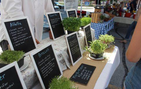 Shopping Local: Farmers' Markets