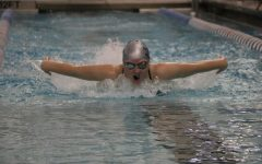 Senior Makalia Pelter races the 100 butterfly.