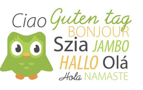 Duolingo is a popular language learning app for beginners.